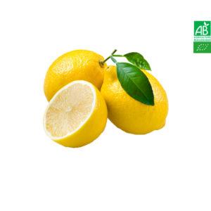 Citron Jaune Bio Sicile 1kg