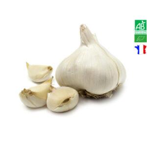 Ail Blanc IGP de la Drôme Bio (1 Gousse)