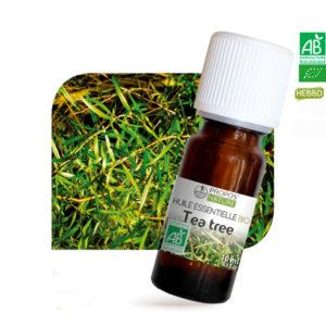 Huile essentielle Bio Tea Tree (Arbre à Thé) 10ml Propos Nature