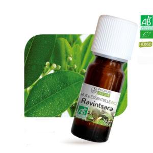 Huile essentielle Bio Ravintsara 10ml Propos Nature