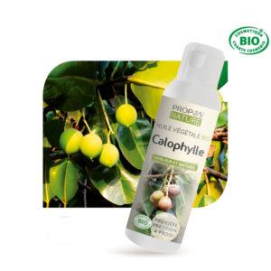 Huile Végétale Vierge Calophylle 100ml Propos Nature