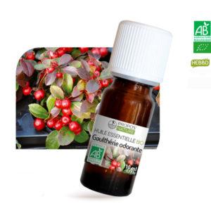 Huile essentielle Bio Gaulthérie Odorante 10ml Propos Nature
