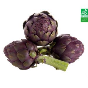 Artichaut Opal Violet Bio 1kg